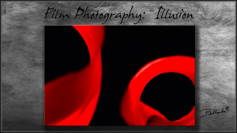 """Illusion Series N°1 of 21 different photographs in the Illusion Series"" MADE TO ORDER Bellanda ®"